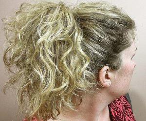 Easy Professional High Ponytail